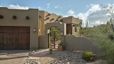 Cave Creek Single Family Home For Sale: 11325 E Blue Wash Road