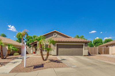 Mesa Single Family Home For Sale: 9958 E Keats Avenue