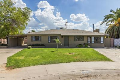Phoenix Single Family Home For Sale: 2425 W Cheery Lynn Road