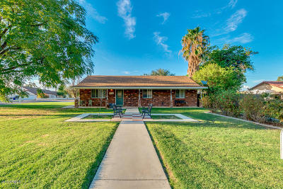 Chandler Single Family Home For Sale: 1516 E Longhorn Drive
