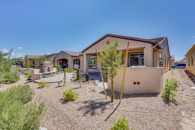 San Tan Valley Single Family Home For Sale: 808 E Sugar Apple Way