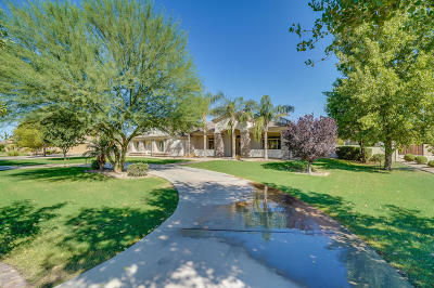 Queen Creek Single Family Home For Sale: 19704 E Country Meadows Drive