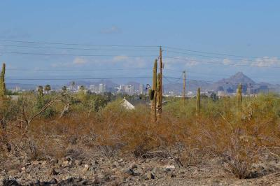 Laveen Residential Lots & Land For Sale: 3271 W Carver Road