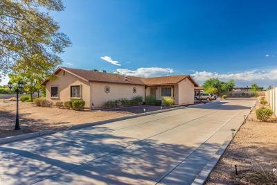 Glendale Single Family Home For Sale: 3736 W Wahalla Lane