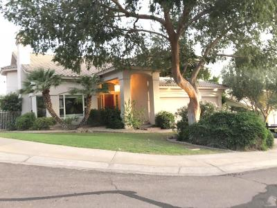 Phoenix Single Family Home For Sale: 1101 E Brook Hollow Drive