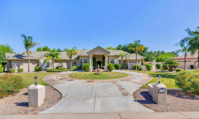 Chandler Single Family Home For Sale: 2334 E Cloud Drive