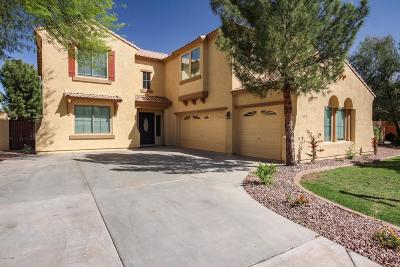 Queen Creek Single Family Home For Sale: 20715 S 184th Place