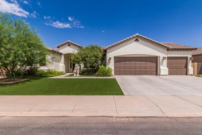 Maricopa Single Family Home For Sale: 41884 W Lucera Lane