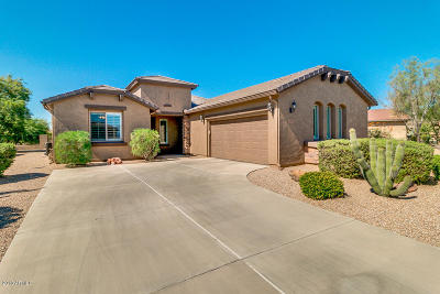 San Tan Valley Single Family Home For Sale: 359 W Bismark Street