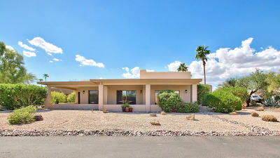 Rio Verde Single Family Home For Sale: 18524 E Horseshoe Bend