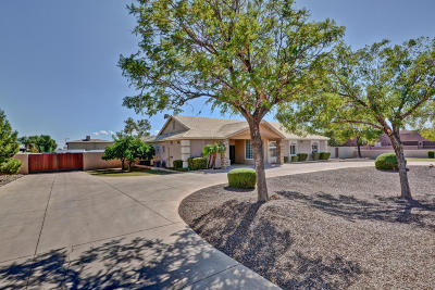 Peoria Single Family Home For Sale: 6987 W Calle Lejos Road