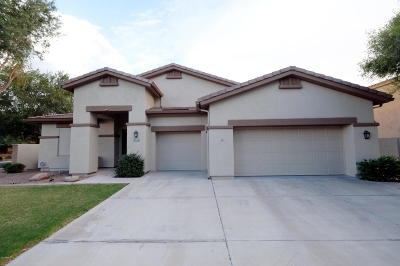 Gilbert Single Family Home For Sale: 1025 W Silver Creek Road