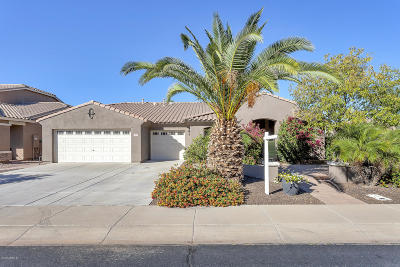 Chandler Single Family Home For Sale: 2634 E Grand Canyon Drive
