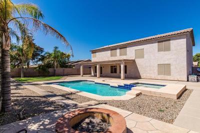 Chandler Single Family Home For Sale: 1225 E San Carlos Way