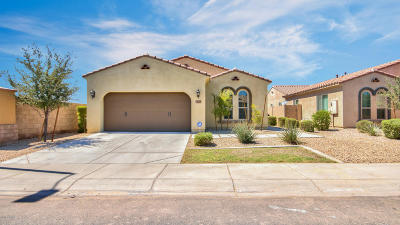 Single Family Home For Sale: 3570 S Arizona Place
