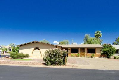 Maricopa County Single Family Home For Sale: 1661 S Azucena Circle