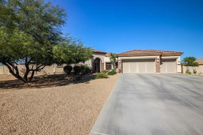 Waddell Single Family Home For Sale: 18518 W Beryl Court
