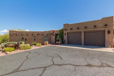 Fountain Hills Single Family Home For Sale: 9048 N Leo Drive