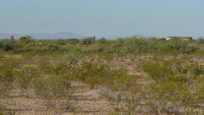 Wittmann Residential Lots & Land For Sale: 211 W Galvin 4.4 Road W