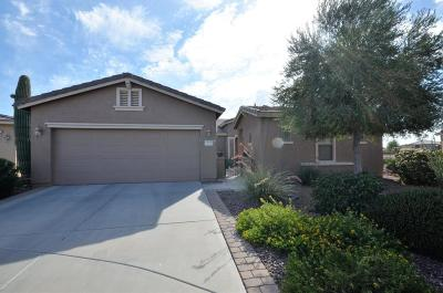 Maricopa Single Family Home For Sale: 20050 N Evening Glow Trail