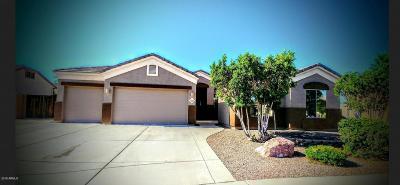 Gilbert Single Family Home For Sale: 3562 E Harvard Court