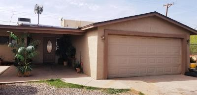 West Phoenix Single Family Home For Sale: 3521 W Melvin Street