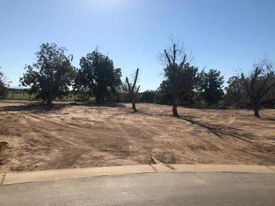 Queen Creek AZ Residential Lots & Land For Sale: $235,000