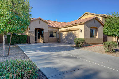 Queen Creek Single Family Home For Sale: 19319 E Thornton Road