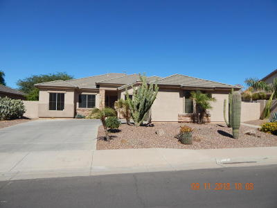 Chandler Single Family Home For Sale: 6624 S Wilson Drive S