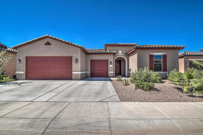 Maricopa Single Family Home For Sale: 41701 W Solstice Court