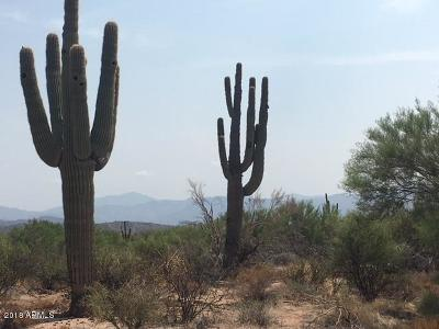 Scottsdale Residential Lots & Land For Sale: 33800 N 140th Place