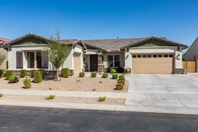 Queen Creek Single Family Home For Sale: 19904 E Apricot Lane