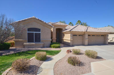 Chandler Single Family Home For Sale: 5120 S McClelland Drive
