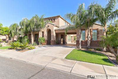 Litchfield Park Single Family Home For Sale: 5621 N Rattler Way