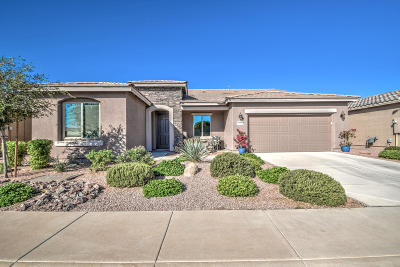 Maricopa Single Family Home For Sale: 19902 N Pinochle Lane