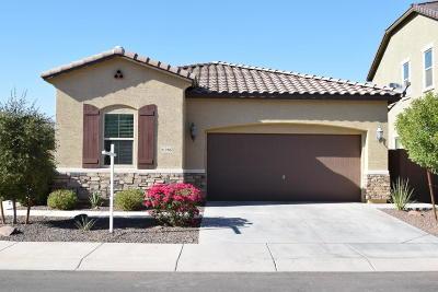 Buckeye Single Family Home For Sale: 21286 W Coronado Road