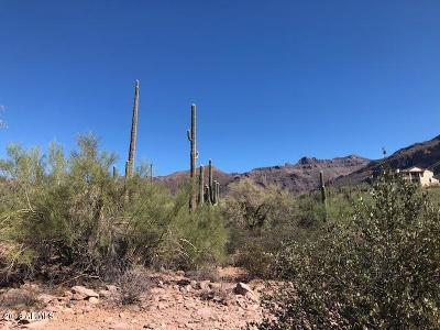 Gold Canyon AZ Residential Lots & Land For Sale: $179,000