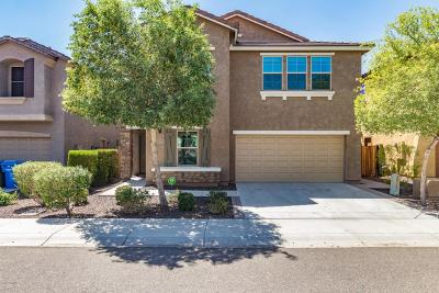 Phoenix AZ Single Family Home For Sale: $313,000