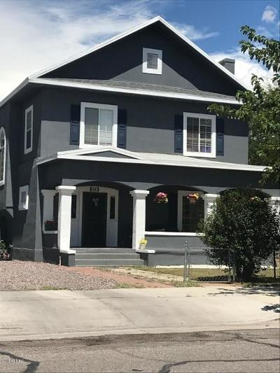 Douglas  Single Family Home For Sale: 864 E 11th Street
