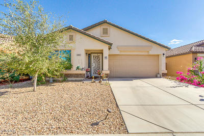 Maricopa Single Family Home For Sale: 40125 W Novak Lane