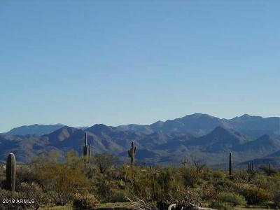 Scottsdale Residential Lots & Land For Sale: 15600 E Lone Mountain Road