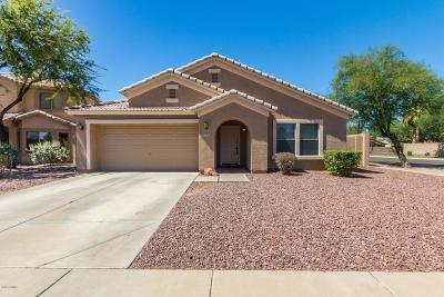 Chandler Single Family Home For Sale: 3922 S Tower Avenue