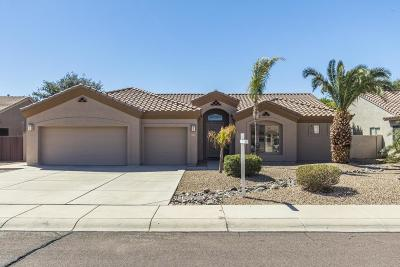 Glendale AZ Single Family Home For Sale: $409,000
