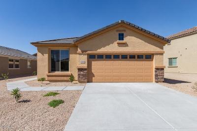 Tolleson Single Family Home For Sale: 12214 W Superior Avenue