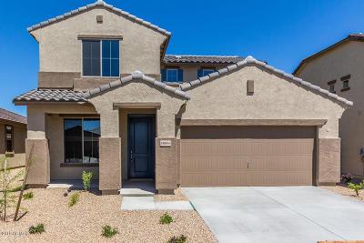 Surprise Single Family Home For Sale: 18054 W Via Del Sol