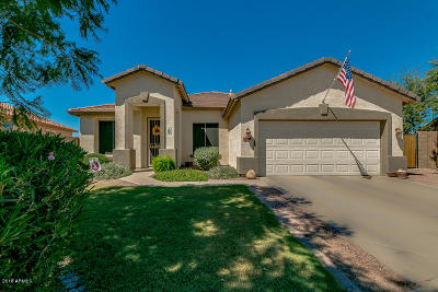 Chandler Single Family Home For Sale: 6016 S Pearl Drive