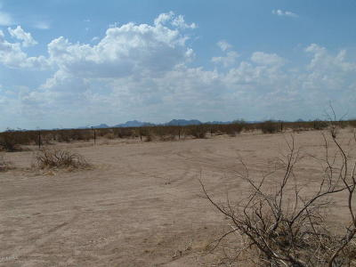Wittmann Residential Lots & Land For Sale: NW 259th Street