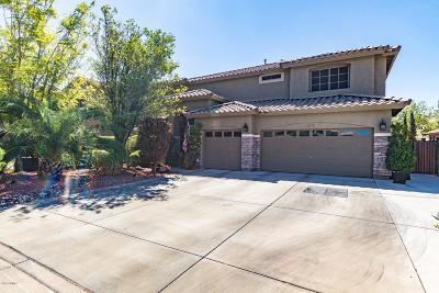 Peoria Single Family Home For Sale: 8429 W Purdue Avenue