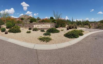 Scottsdale Single Family Home For Sale: 7538 E Camino Salida Del Sol N
