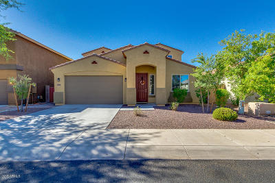 Sun City Single Family Home For Sale: 12025 W Via Del Sol Court